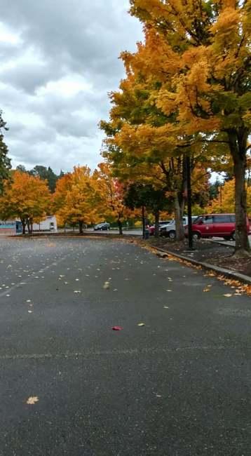 Fall Community Center